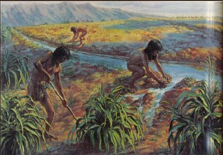 Anasazi Irrigation